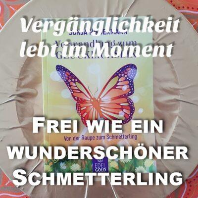 #29 Frei wie ein wunderschöner Schmetterling