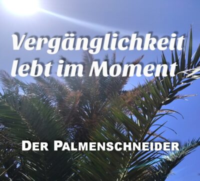 #43 Der Palmenschneider