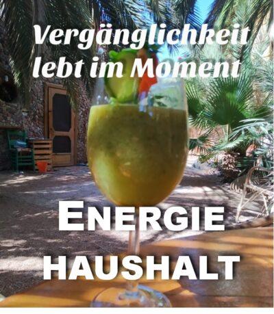 #61 Energiehaushalt